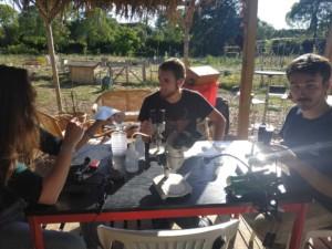 Des personnes assises autour d'une table en train d'échanger au sujet de leurs observations à l'aide de loupes binoculaires.