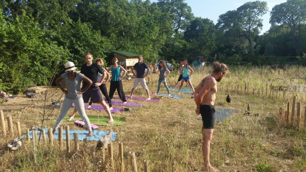 Séance de yoga collective avec 8 participants et participantes avec un professeur.