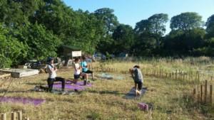 Quatre personnes en train de faire du Yoga à l'Oasis