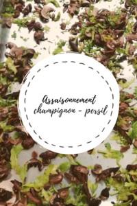 """Page de titre de la recette """"Assaisonnement champignon - persil"""""""