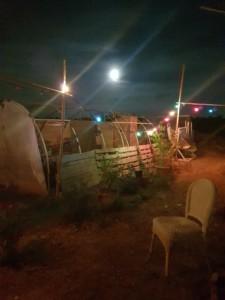 Serre tunnel de l'Oasis avec la pleine lune en arrière plan.