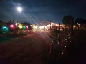 Arche d'entrée de l'Oasis de nuit, éclairée par une guirlande d'ampoules de couleur.