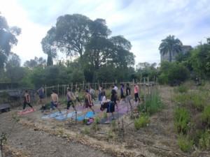 Une autre quinzaine de personnes en train de faire du Yoga. Ils et elles sont debout, pieds écartés, mains jointes dans le dos et bras tendus pour étirer leurs omoplates.