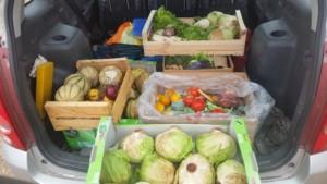 Cagettes de fruits et légumes variés dans le coffre d'une voiture