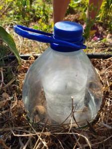 Récupération du haut d'un bidon d'eau et du bas d'une bouteille plastique pour créer une mini serre pour un plant