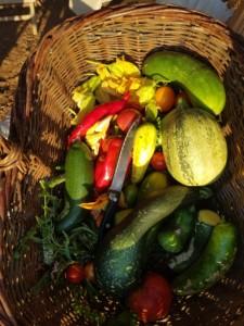 Panier en osier contenant divers fruits et légumes. Poivrons, courgettes, concombres, pastèque...