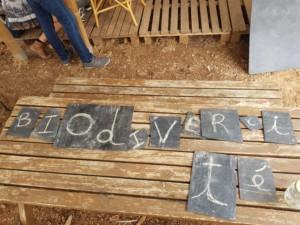 """Ardoises portant des lettres et composant le mot """"biodiversité"""""""