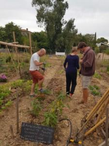 Trois personnes s'affairent dans le jardin
